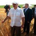 Лукашенко розкритикував українську земельну реформу