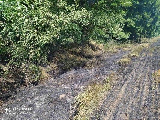 Житомирська область: за добу рятувальники області ліквідували три загоряння сухої рослинності на загальній площі 4 га