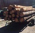 На Житомирщині поліція затримала вантажівку з нелегальною деревиною