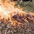 68-річна львів'янка згоріла заживо, спалюючи сміття у дитсадку