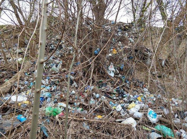 Вулиця Свободи у Житомирі вже 20 років потерпає від сміття. Коли це закінчиться? ФОТО