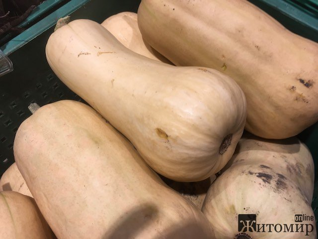 Скільки коштують у житомирських гастрономах перші цьогорічні гарбузи? ФОТО