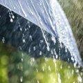 На 1 серпня в Житомирі синоптики прогнозують дощ