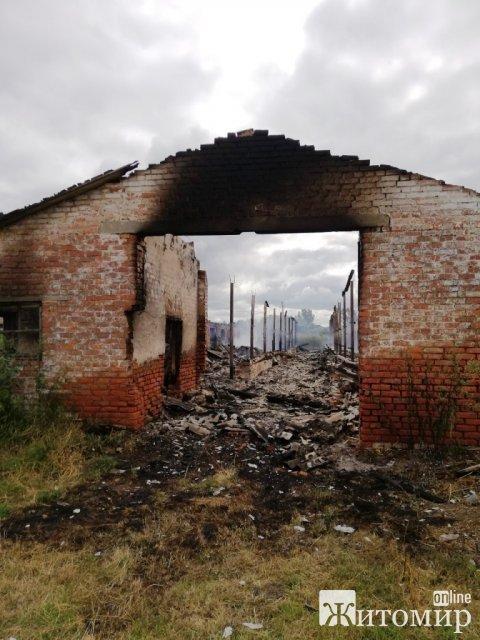 Неподалік Житомира горіла ферма: вогонь знищив внутрішнє оздоблення, 15 тонн сіна та близько 30 козенят. ФОТО