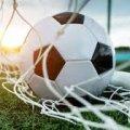 Бізнесмен з Бердичева піде під суд за фінансові махінації при реконструкції футбольного поля