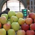 Житомиряни скаржаться, що на ринках міста практично немає місцевих яблук