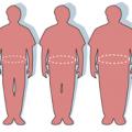 На Житомирщині 43% населення і віці 18 років та старше мають надлишкову вагу, - статистика