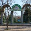 Завершується тендер на реконструкцію алеї Ботанічного саду в Житомирі