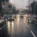 У Житомирі падає дощ