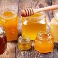 На Михайлівській у Житомирі відбудеться ярмарок меду