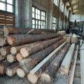 У Коростишівському районі під час обшуку виявлено понад 36 м3 деревини невідомого походження