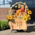 Медовий ярмарок на житомирській Михайлівській. ФОТО