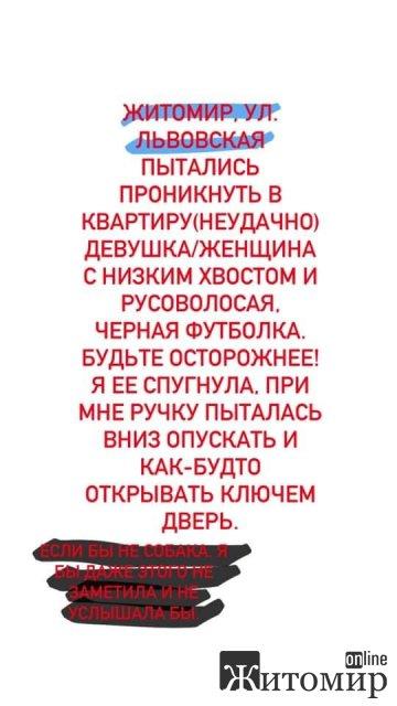 На Львівській у Житомирі собака злякала злодійку, яка намагалася проникнути до квартири