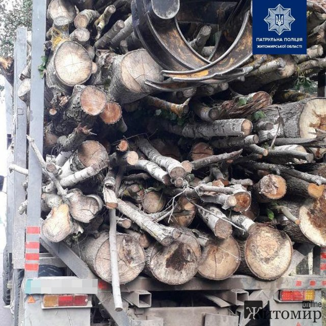На трасі Київ-Ковель в Житомирській області патрульні зупинили УРАЛ з деревиною без документів. ФОТО