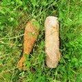 Житомирська область: піротехніки ДСНС області знищили чотири боєприпаси часів Другої світової війни