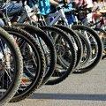 До Житомира приїде команда ветеранів війни на велосипедах