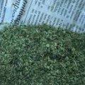Поліцейські вилучили наркотики у 10 жителів Житомирщини