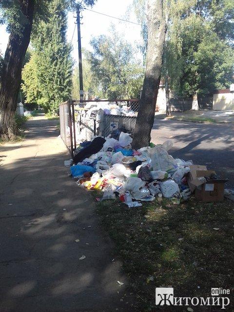 """""""Это не Сомали и не Гаити - просто улица Леси Украинки в Житомире"""""""
