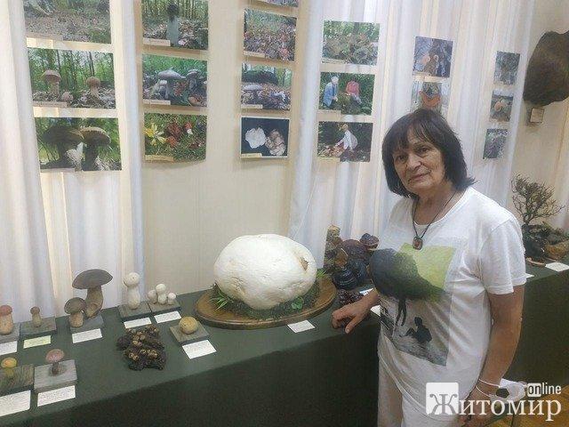 """У Житомирському краєзнавчому музеї працює виставка """"Гриби Полісся"""". ФОТО"""