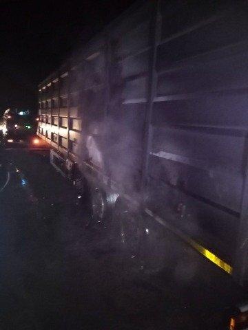 Біля Житомира загорілася вантажівка з зерном, пожежники встигли врятувати вантаж. ФОТО