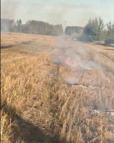 На Житомирщині за паління трави оштрафували чоловіків на 9 тисяч гривень. ФОТО