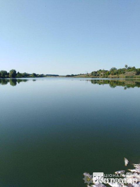 Масовий мор риби в річці на Житомирщині, поліція відкрила кримінальне провадження. ФОТО
