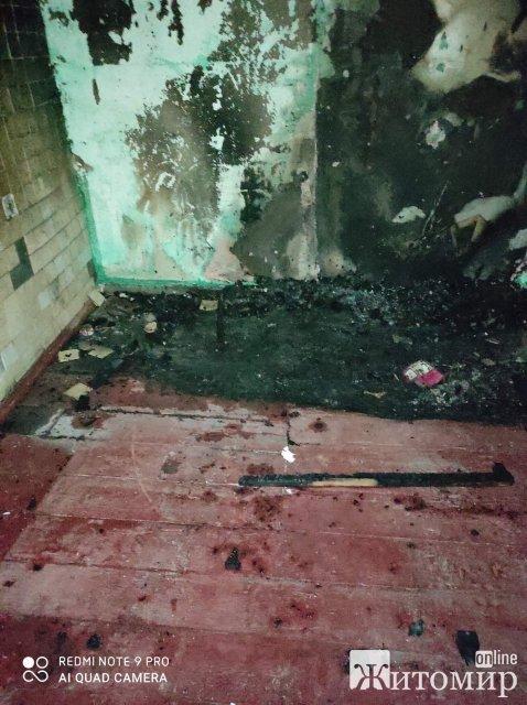 У селі Новоград-Волинського району горів будинок: в кімнаті знаходився господар. ФОТО