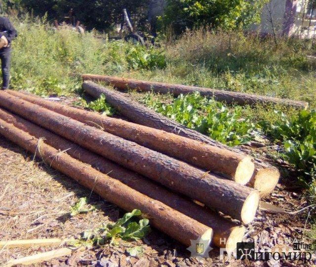 У селі Житомирської області поліцейські натрапили на нелегальну пилораму. ФОТО
