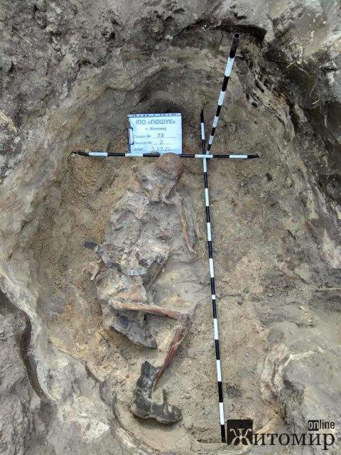 Пошуківці розповіли, де на Житомирщині ще знайшли рештки солдат та що поруч із ними було. ФОТО