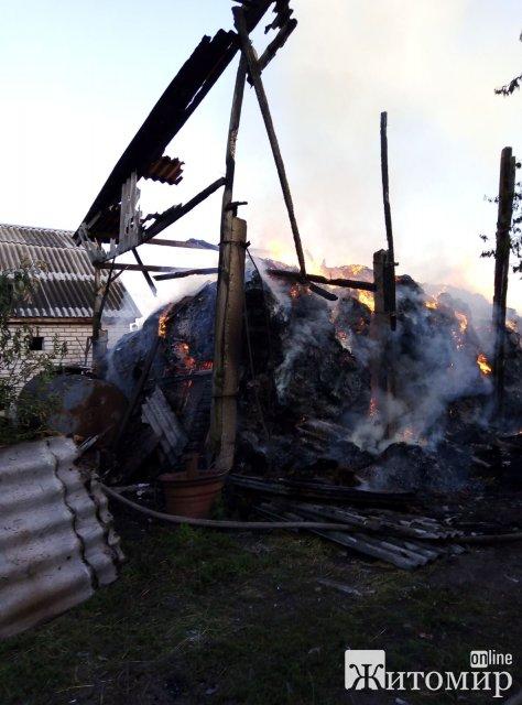У селі Житомирської області 7-річний хлопчик травмувався під час гасіння пожежі. ФОТО