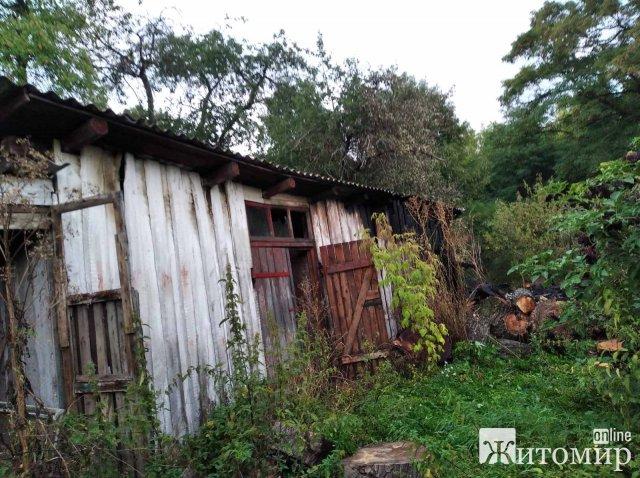 Через сухостій у селі на Житомирщині загорілась господарча будівля. ФОТО