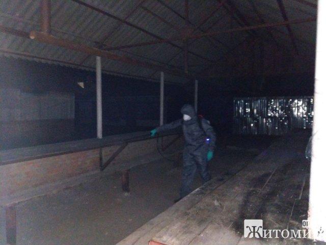 У селі, селищі та місті Житомирської області рятувальники дезінфікували місця скупчення людей. ФОТО