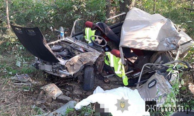 На Житомирщині перекинувся автомобіль: загинули 2 людей