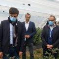 Заступник міністра розвитку економіки поїхав подивитися на житомирську лохину. ФОТО
