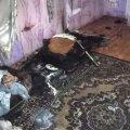 У селі Житомирської області загорівся обігрівач, опіки отримала однорічна дитина. ФОТО