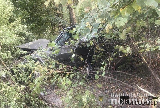 Житель Донеччини на мікроавтобусі врізався у ВАЗ, що стояв на узбіччі дороги неподалік Житомира. ФОТО