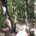 На території, де знайшли городище часів Київської Русі в Житомирській області, встановлять камери. ФОТО