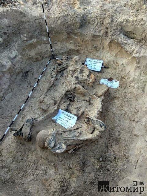 Пошуківці розповіли про знайдені решти 6 солдат, які у 1941 році загинули на Житомирщині. ФОТО