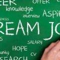 Как найти работу в IT компании?
