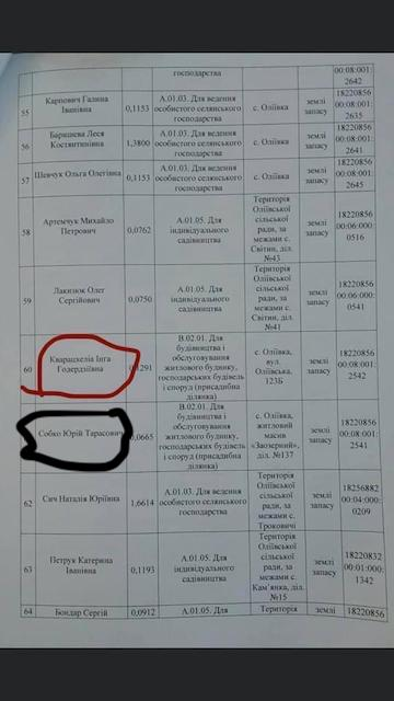 Син депутата облради Собка отримав наділ землі як «учасник АТО»
