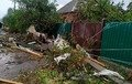 В Україні вітер позривав дахи, травмував 3 людей та знеструмив 43 населених пункти