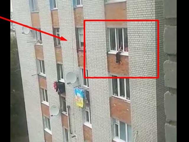 Свесила с 7-го этажа вниз головой: в Житомире женщина жестоко издевалась над щенком. ВИДЕО