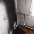 У квартирі на Князів Острозьких горів холодильник, пожежу помітила дитина. ФОТО