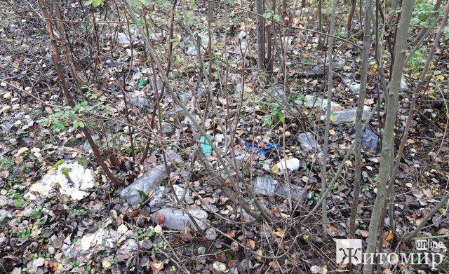 У Глибочиці з'явилося сміттєзвалище. ФОТО