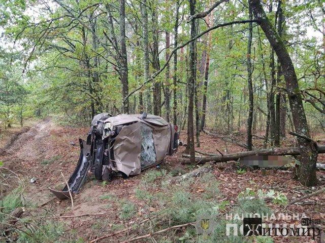 У Житомирській області з дороги злетів Lanos: загинула пасажирка. ФОТО