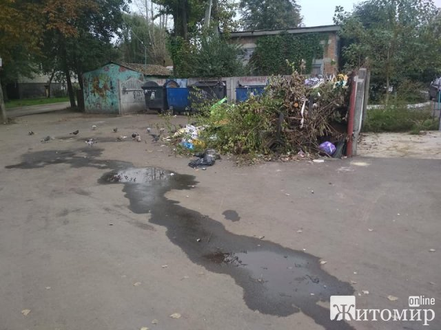 В одному з дворів Житомира утворилося сміттєзвалище. ФОТО