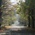 На Житомирщині суттєво знизиться температура