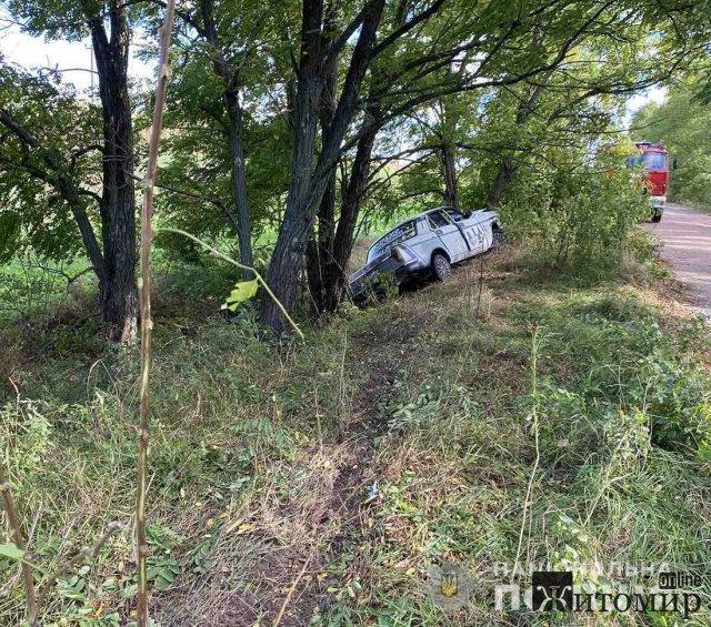 """На дорозі в Житомирській області """"Волга"""" з'їхала зі шляху та врізалась у дерево, є потерпілі. ФОТО"""