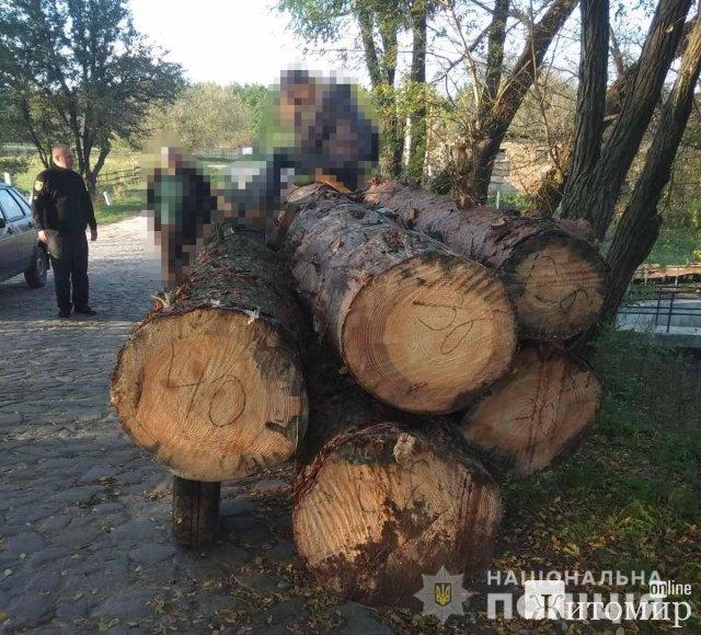 У Житомирському районі та на Олевщині затримали трактори з нелегальною деревиною. ФОТО