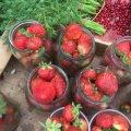 Почому полуниці на Житньому ринку у Житомирі?